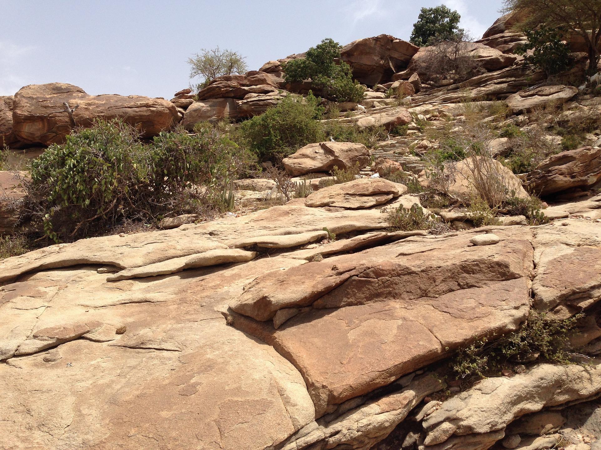 Read more about the article Adam Sidikou   Mein Somalia