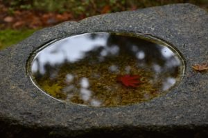 Read more about the article Haiku #133